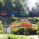 petit train Anduze