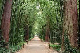 La Bambouseraie d 'Anduze