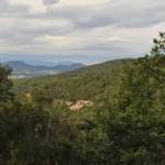 panorama Salamandre